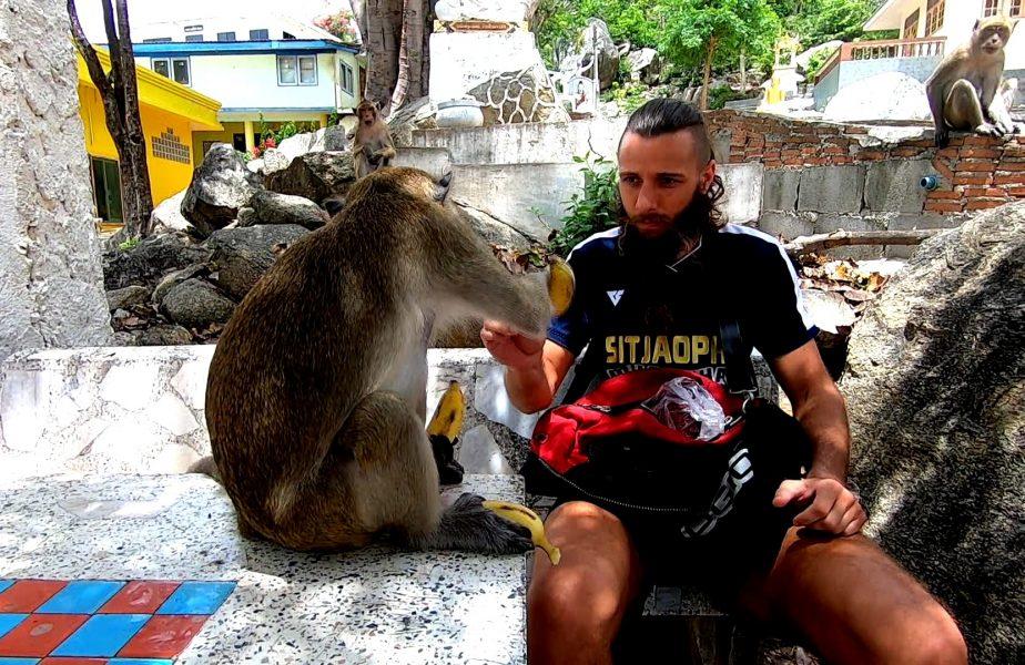 Un român se antrenează cu maimuţele ca să-şi facă KO adversarii. Imagini unice