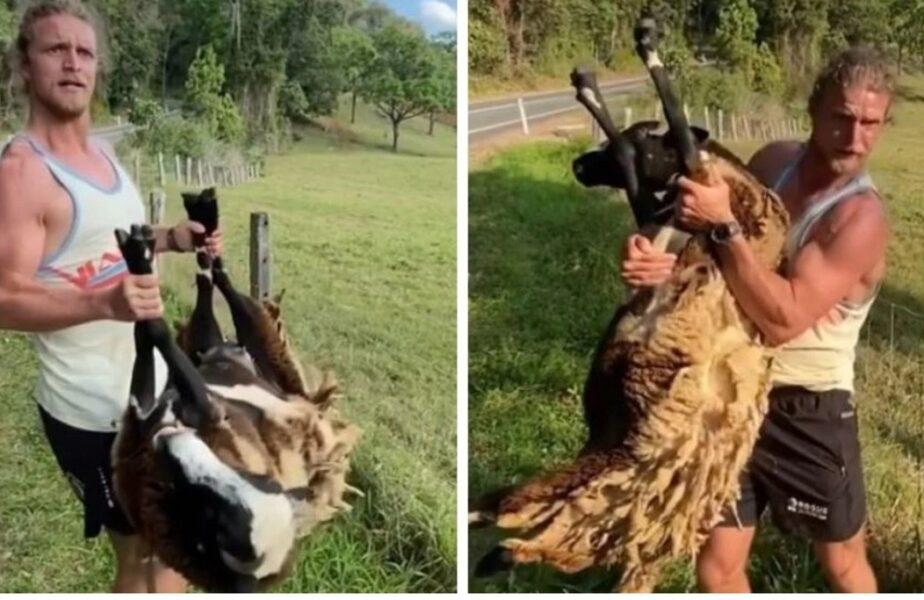 Imagini virale cu un fost star din rugby. Gest superb făcut de Nick Cummins! Cum a salvat viaţa unui animal